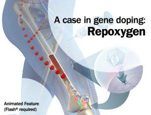 Repoxygen
