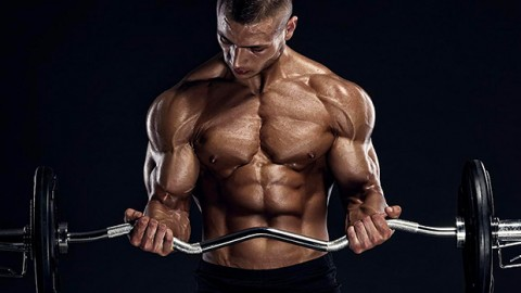 Training of hands first biceps or triceps
