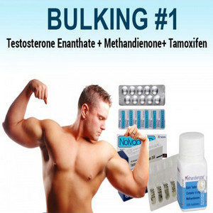 Bulking Steroid Cycles